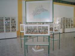 Imágenes del Museo Geológico Minero